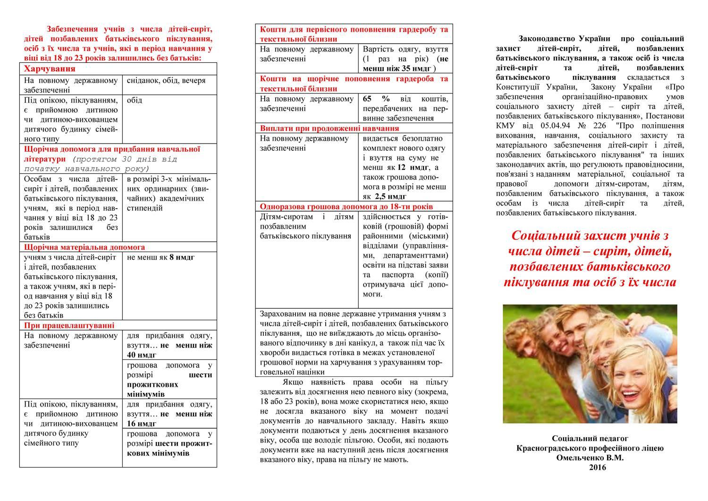 Соціальний захист учнів з числа дітей – сиріт_Страница_2